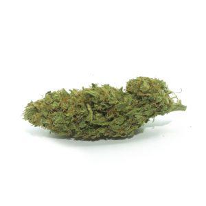 weeditaly cannabis light bubble gum
