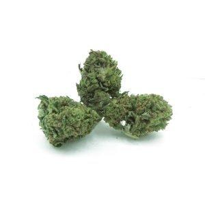 weeditaly cannabis light ak47